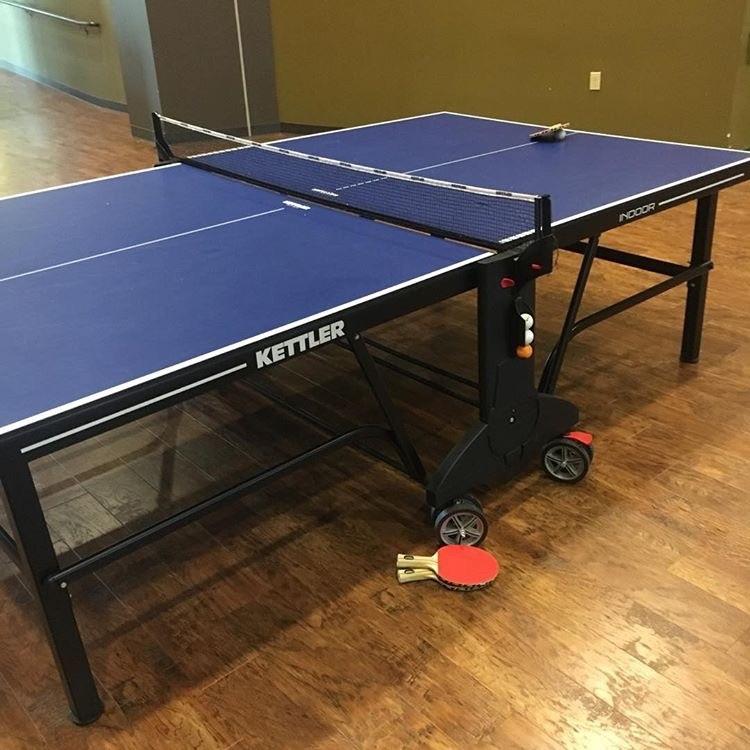 Kettler champ 5 0 indoor table for Table kettler