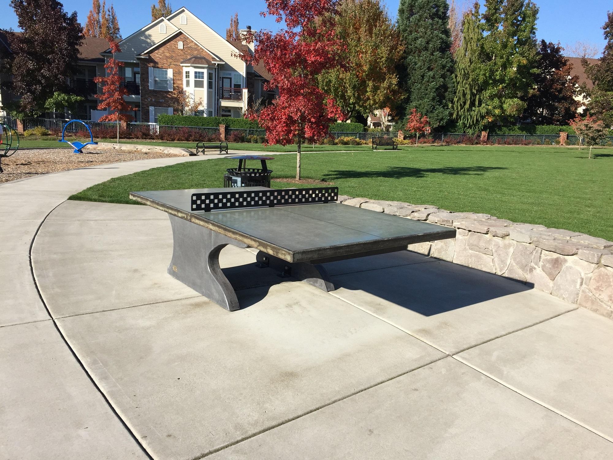 Etonnant Blue Concrete Ping Pong Table