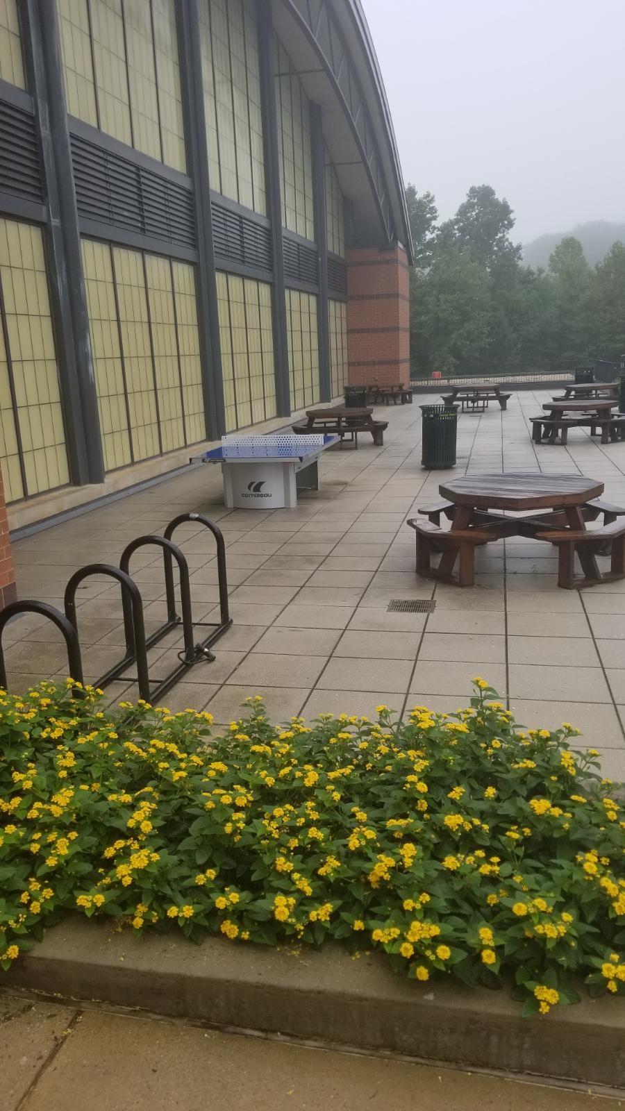 cornilleau 510 ping pong table george mason university