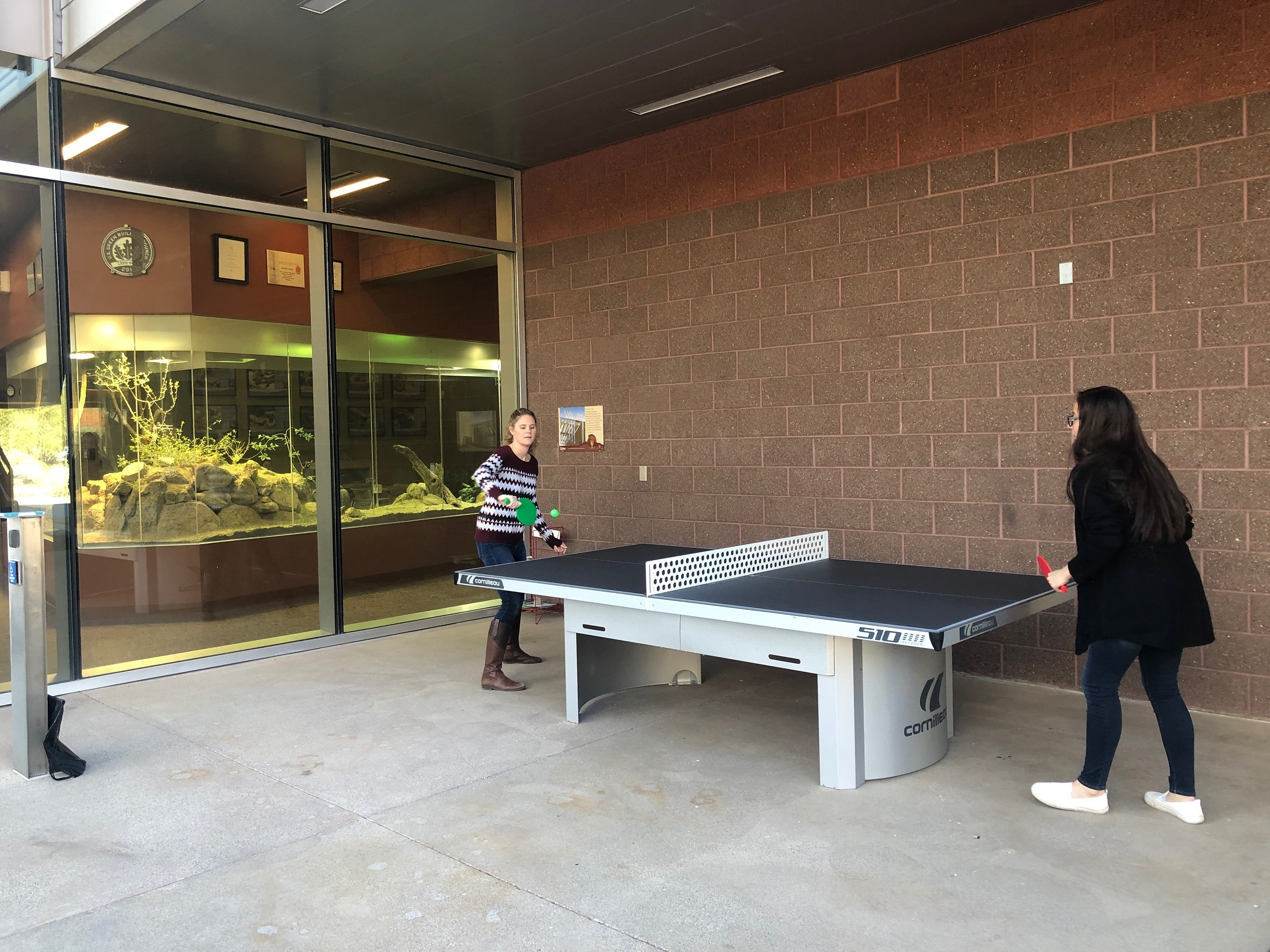cornilleau 510 ping pong community college